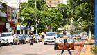 Plano de Arborização quer mais 1,2 mil árvores na Avenida Marcelino Pires