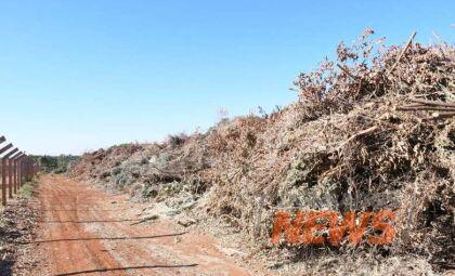 Município empenha meio milhão de reais para empresa picadora de galhos
