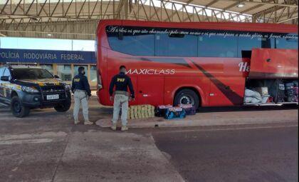 Motoristas de ônibus são presos com 167 quilos de cocaína na BR-262