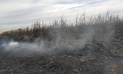 Empreiteira paulista é autuada em R$ 1,47 milhão por incêndio em lavoura de cana-de-açúcar em MS