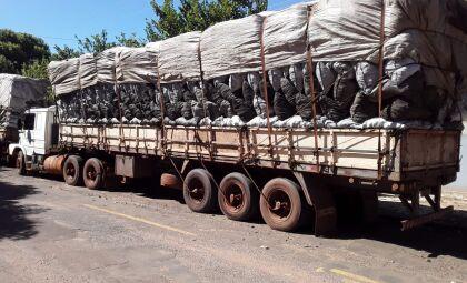Cargas de 164 m³ de carvão ilegal motivam multa de R$ 49,2 mil em empresa carvoeira