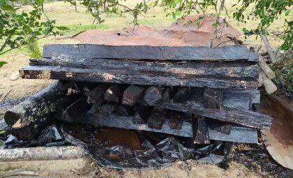 Homem é autuado por armazenamento e exploração ilegal de madeira em assentamento