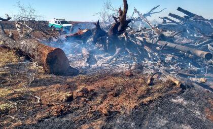 Homem é autuado em R$ 27 mil por incêndio em propriedade rural