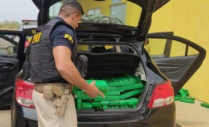 Polícia apreende mais de 300 kg de maconha em Naviraí