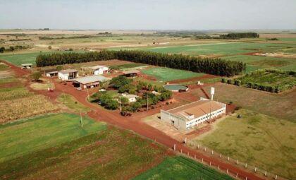 Leilão da UFGD para venda de soja e milho da fazenda experimental não tem interessados