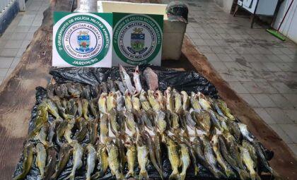 Catarinenses são multados em R$ 1,8 mil por pesca predatória em Bonito