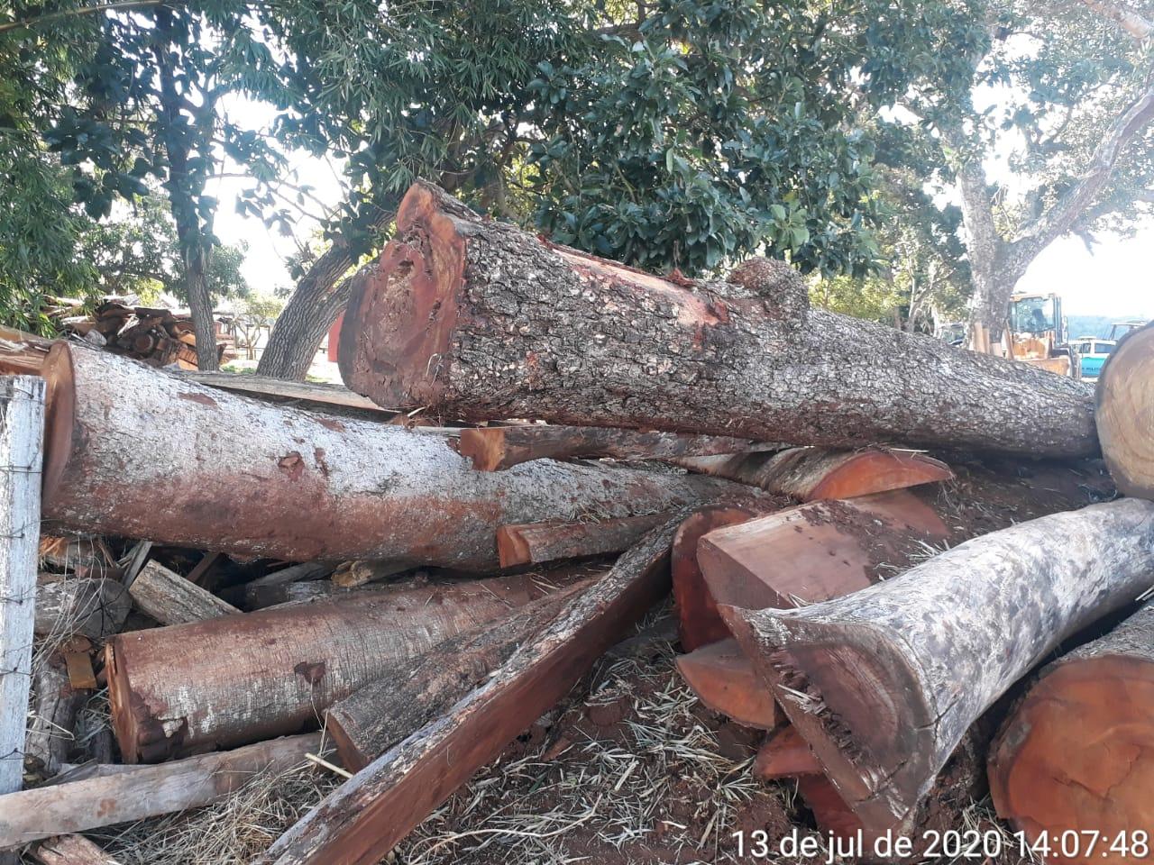 Fazendeiro é multado em mais de R$ 20 mil por queimada e exploração ilegal de madeira